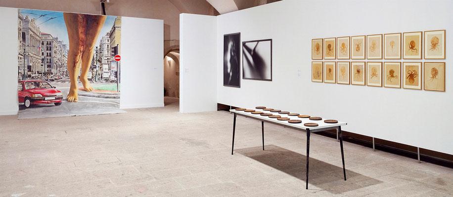 sélection d'œuvres de la collection du FRAC PACA à la Vielle Charité © jcLett