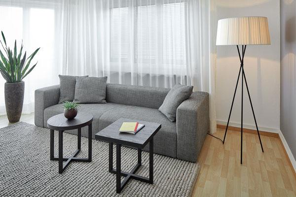 Living Wohnung Küsnacht