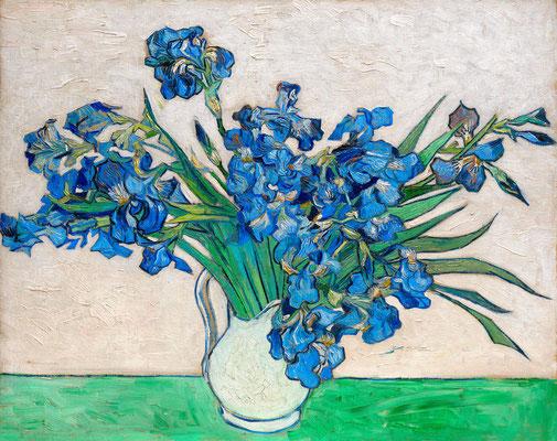 Irises (3)