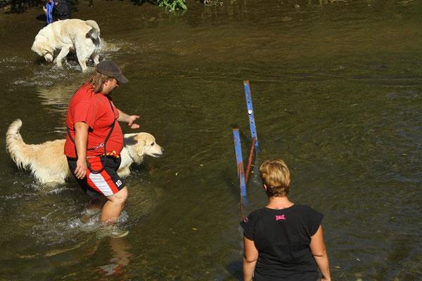 Gar nicht so einfach alle Übungen in den Fluten durchzuführen - Herausforderung Pur für Hund & Herrl!