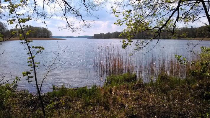 ein See