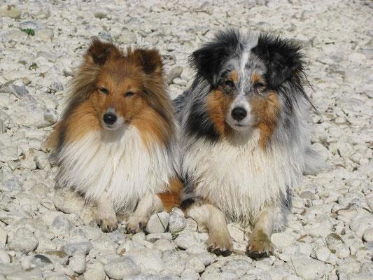 Venja & Kiwi
