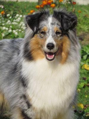 Kiwi with 6 years