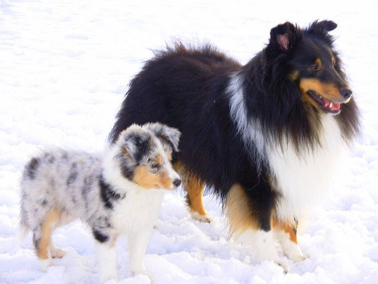 Kiwi and her father Shawnee