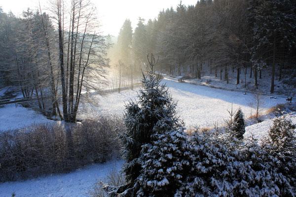 Winterstimmung im Mühltal