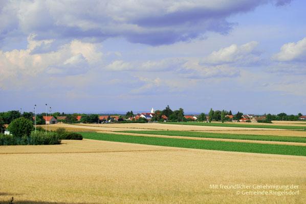 Ringelsdorf von Weitem