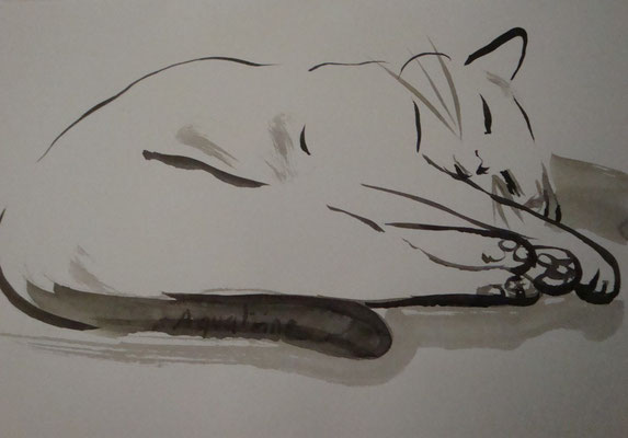 """Catherine MICAELLI         """"sweety at home""""  40x50cm    encre sur papier."""