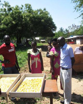 Solartrockner  im *Moyo Wangu Environmentcenter*
