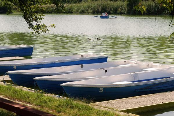 Canoë sur l'Agout en Pays de Cocagne, canoë en Pays de Cocagne, kayak en famille Tarn