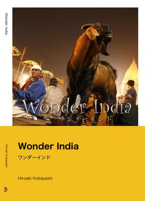 ワンダーインド/Wonder India