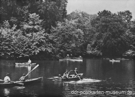 Gotha - Parkteich 1966