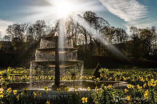 Orangerie Gotha im Frühling 2015