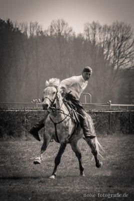 Deutsche Meisterschaften der Kavallerie 2013 auf dem Boxberg bei Gotha