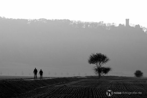 Mühlburg im Nebel
