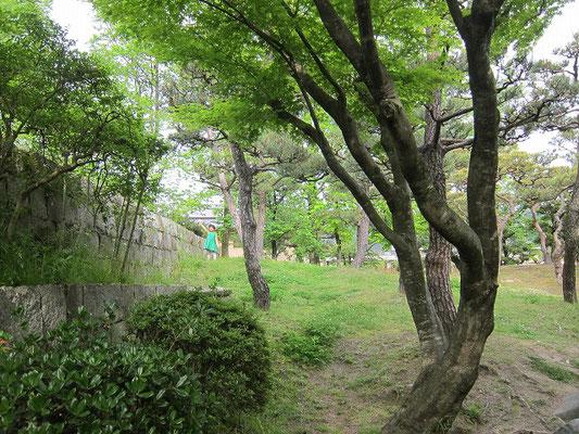 京都市美術館裏庭