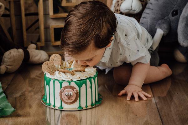 Cakesmash Dschungel, Kuchenshooting erster Geburtstag, Jungle theme, Kindershooting Gummersbach NRW