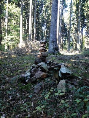 Steine im Wald