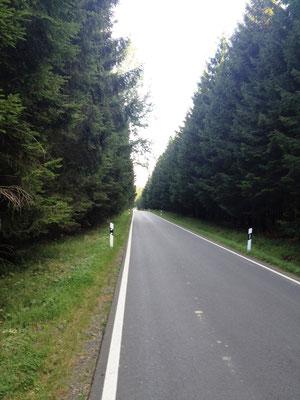 zur Abkürzung entlang der Strasse nach Lahnhof