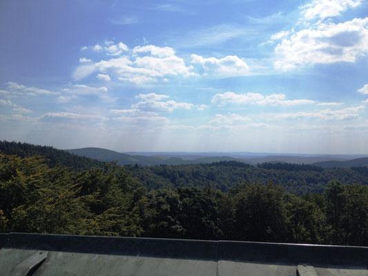 Blick vom Turm der Ginsburg