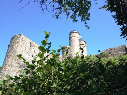alte Burg Greifenstein