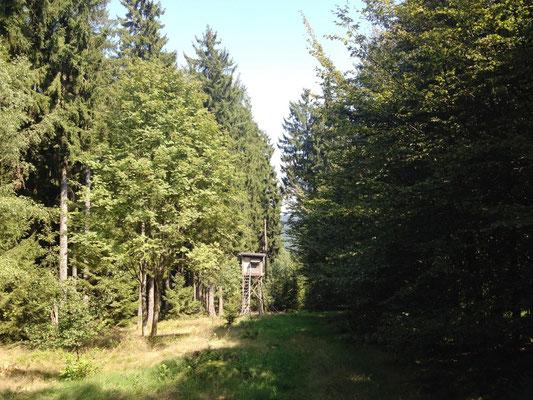 Blick vom Rehberg bei Hilchenbach