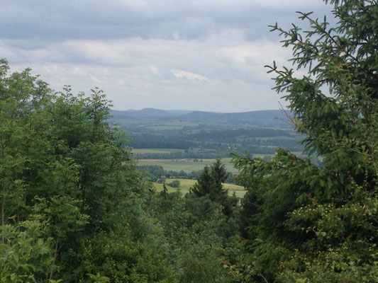Blick vom Bilster Berg