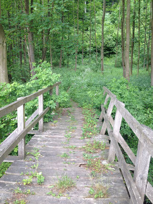 Die marode Brücke über den Mühlenbach