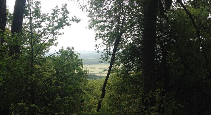 Blick ins Tal - kurz vor den Teutonia Klippen