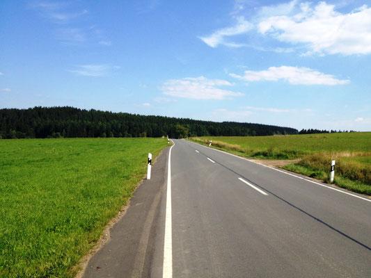 On the road (zur Siedlung Lützel)