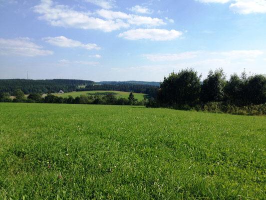 Pause im Gras mit Blick auf Lützel (achte auf den Funkmast in der Ferne)