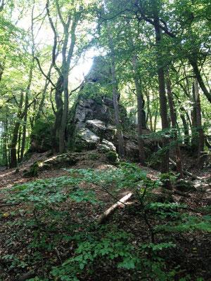 und noch mehr Steine im Wald
