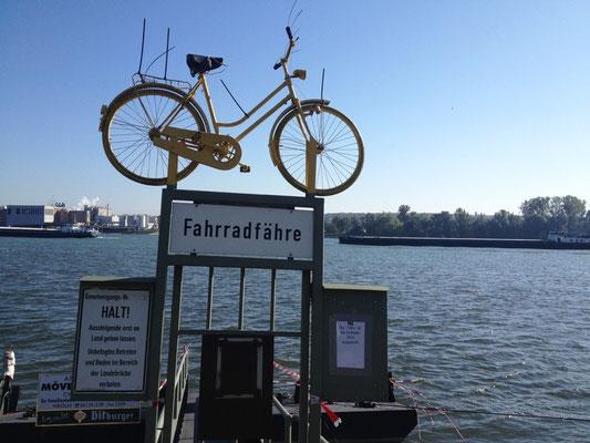 die Fahrradfähre für's nächste Jahr