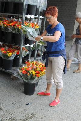 Blumenteam