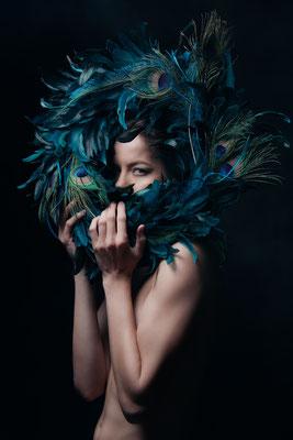 Peacock Feather by Scott Weingarten  Digital photograph  $800