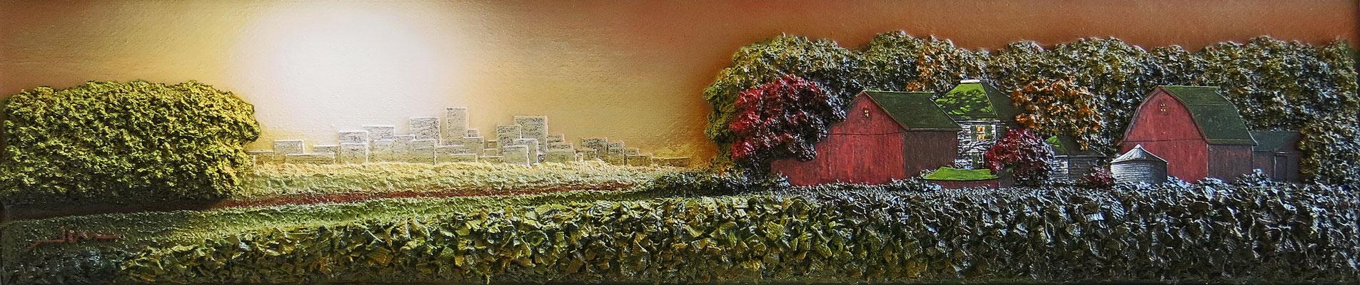 "Symbiosis by James Golaszewski, mixed media on Canvas  9 x 45"" x 5""  $3500 framed"