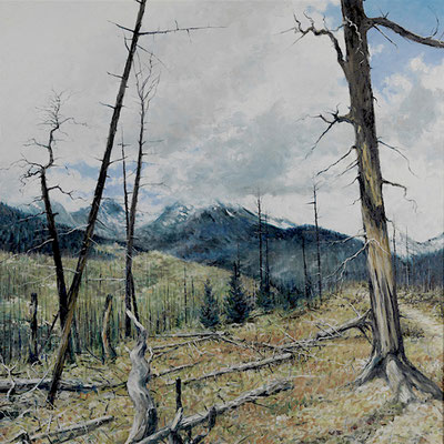 """Rocky Mountain National Park Wild Basin by Robert Sunderman oil on canvas 48"""" x 48"""" framed $2950"""