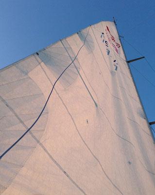 Ferienwohnungen Lindau Insel Segelboot Bodensee