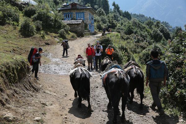 Nepal_Everest4_Reisefotograf_Jürgen_Sedlmayr_25