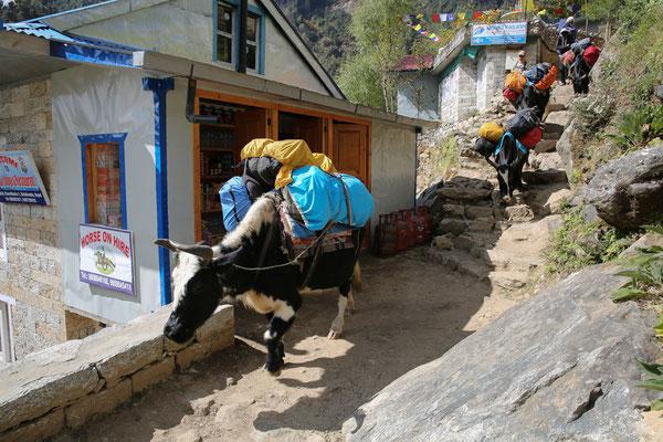 Nepal_Everest3_Reisefotograf_Jürgen_Sedlmayr_67
