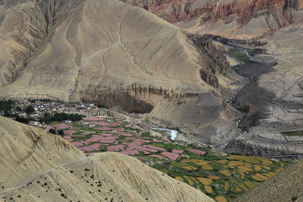 Nepal_UpperMustang_Expedition_Adventure_Jürgen_Sedlmayr_271