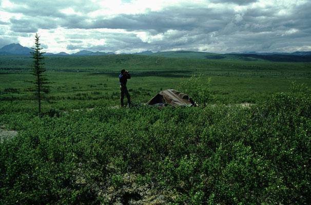 Alaska_2_Der_Fotoraum_Jürgen_Sedlmayr_303
