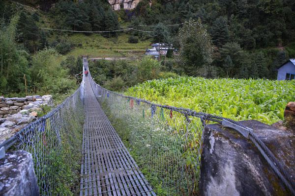 Nepal_Everest1_Abenteurer_Jürgen_Sedlmayr_65
