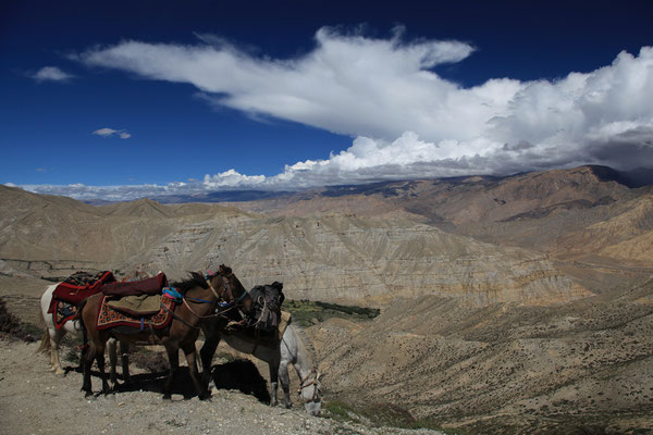 Nepal_UpperMustang_Expedition_Adventure_Jürgen_Sedlmayr_233