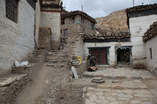 Nepal_UpperMustang_Abenteurer_Jürgen_Sedlmayr_148