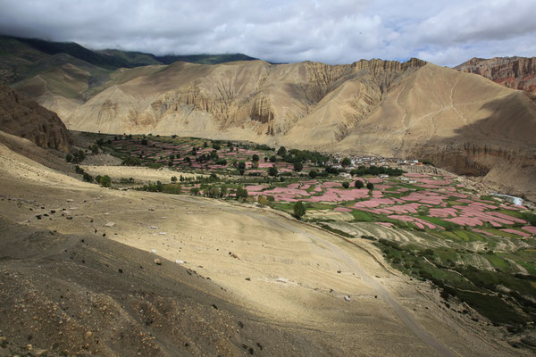 Nepal_UpperMustang_Expedition_Adventure_Jürgen_Sedlmayr_275