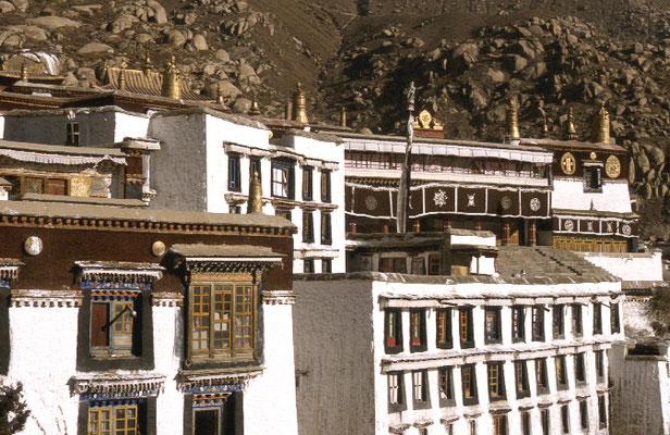 Tibet_Expedition_Adventure_Jürgen_Sedlmayr_218