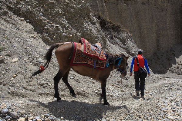 Nepal_UpperMustang_Jürgen_Sedlmayr_497