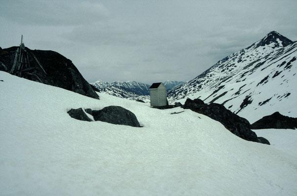 Alaska_2_Jürgen_Sedlmayr_213
