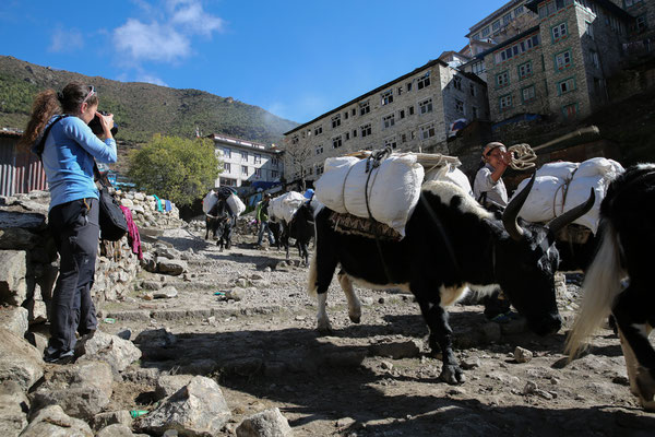 Nepal_Everest3_Abenteurer_Jürgen_Sedlmayr_94
