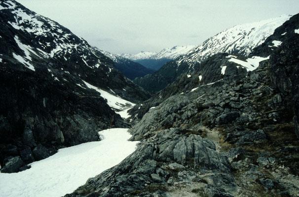 Alaska_2_Jürgen_Sedlmayr_211